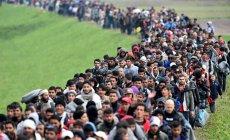 ''Ötən il 3030 azərbaycanlı Almaniyadan sığınacaq istəyib''