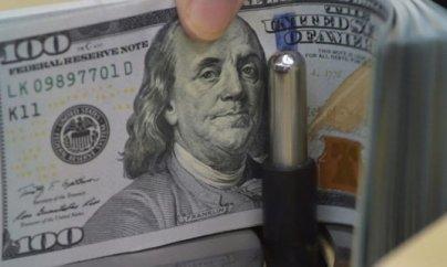 Dollar ən yüksək həddə