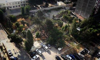 Xətaidə ağaclar kütləvi kəsilir, hündürmərtəbəli bina tikilir - FOTO