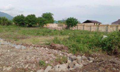 Sakinlər: İcra hakimiyyəti meşə ərazisini satır, Ekologiya Nazirliyi isə susur (FOTO)