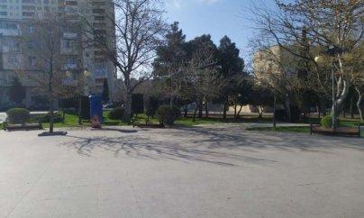 Parklarda skamyalar yığışdırıldı