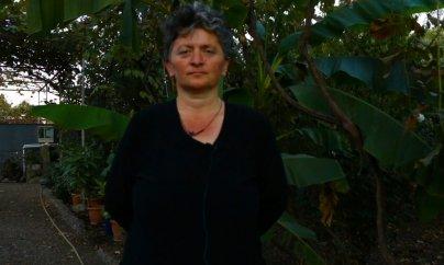 """""""Bütün problemləri birgə həll edirik"""" – VİDEO +İnfoqrafika"""